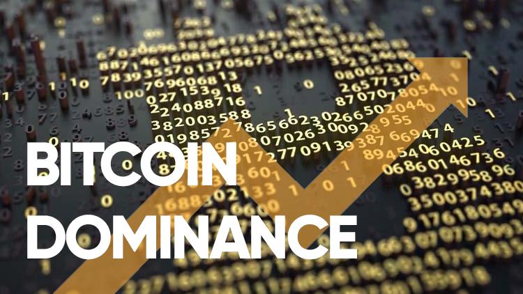 Bitcoin Dominance (Bitcoin Para Hakimiyeti) Nedir?